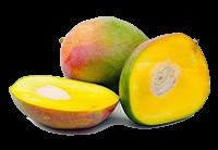 frutto del mango africano